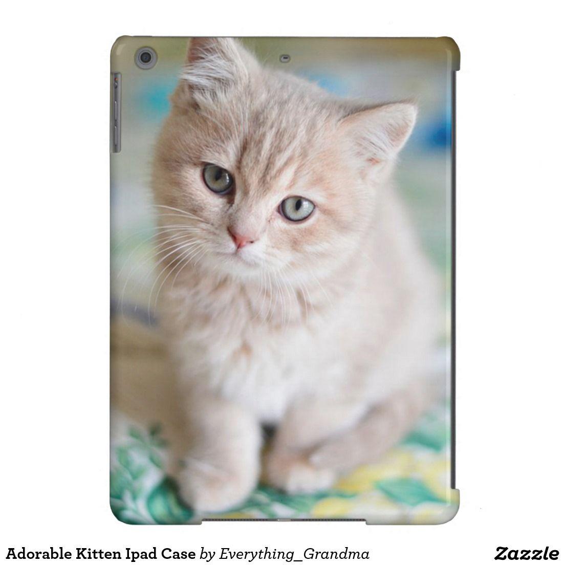 Adorable Kitten Ipad Case Zazzle Shop Pinterest