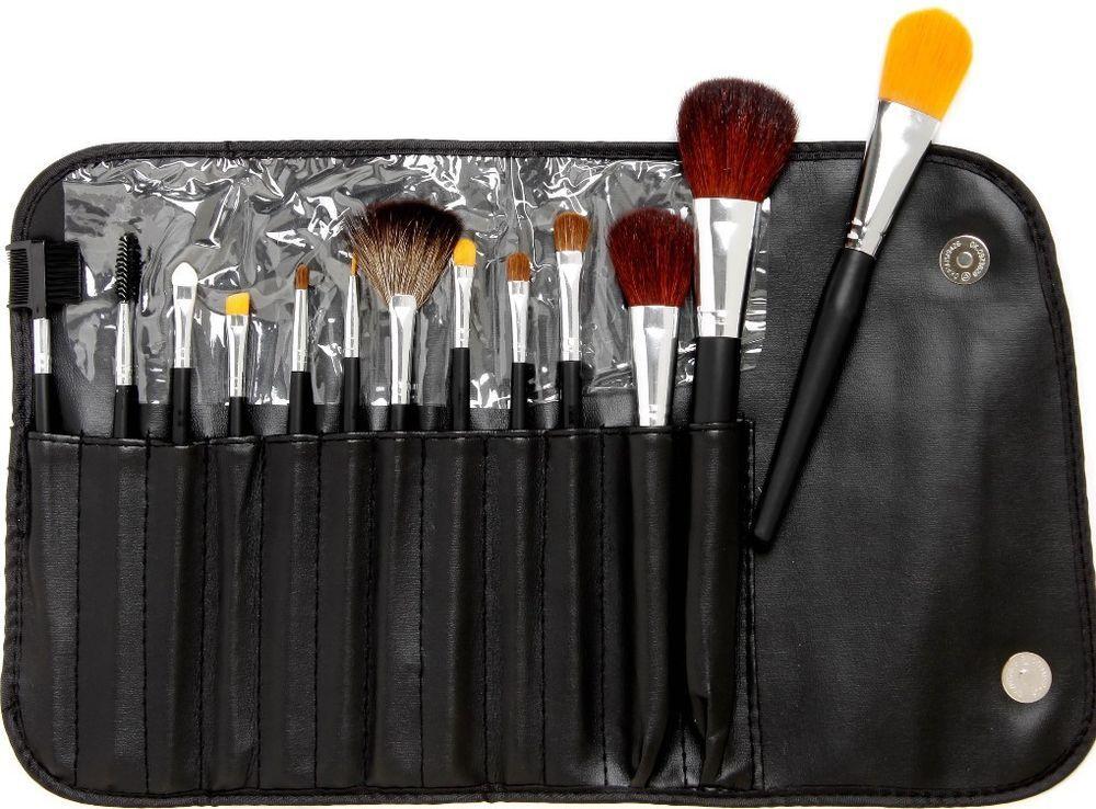 13pc makeup set Makeup brush set, Fan brush makeup