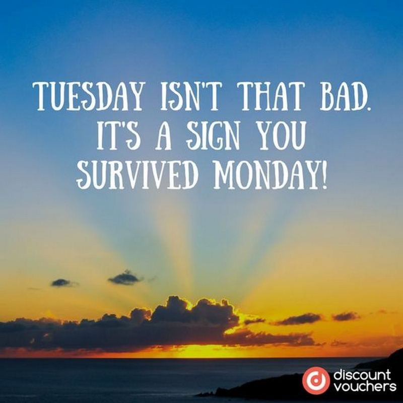 101 Funny Tuesday Memes When You Re Happy You Survived A Workday Happy Tuesday Quotes Happy Tuesday Meme Tuesday Meme