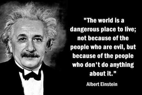 Einstein Albert Einstein Pinterest