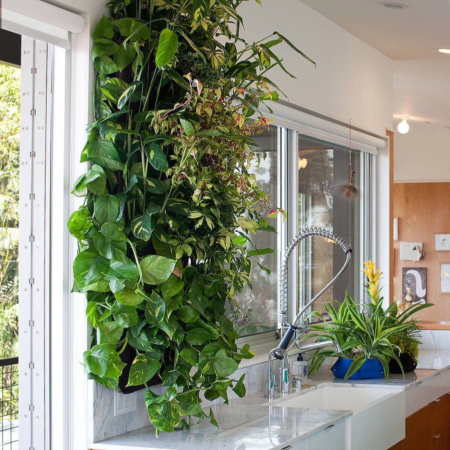 lovely kitchen, indoor kitchen vertical garden stainless steel