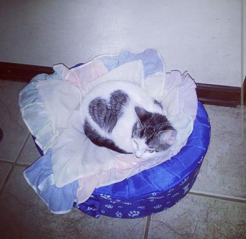 Meu bebê!! O coração é tão grande que não cabe somente no peito!!