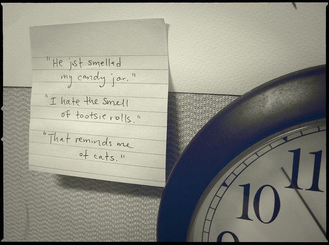 Ethan Allen Quotes Ethan Allen Quotejstephen Conn  Quotes  Pinterest