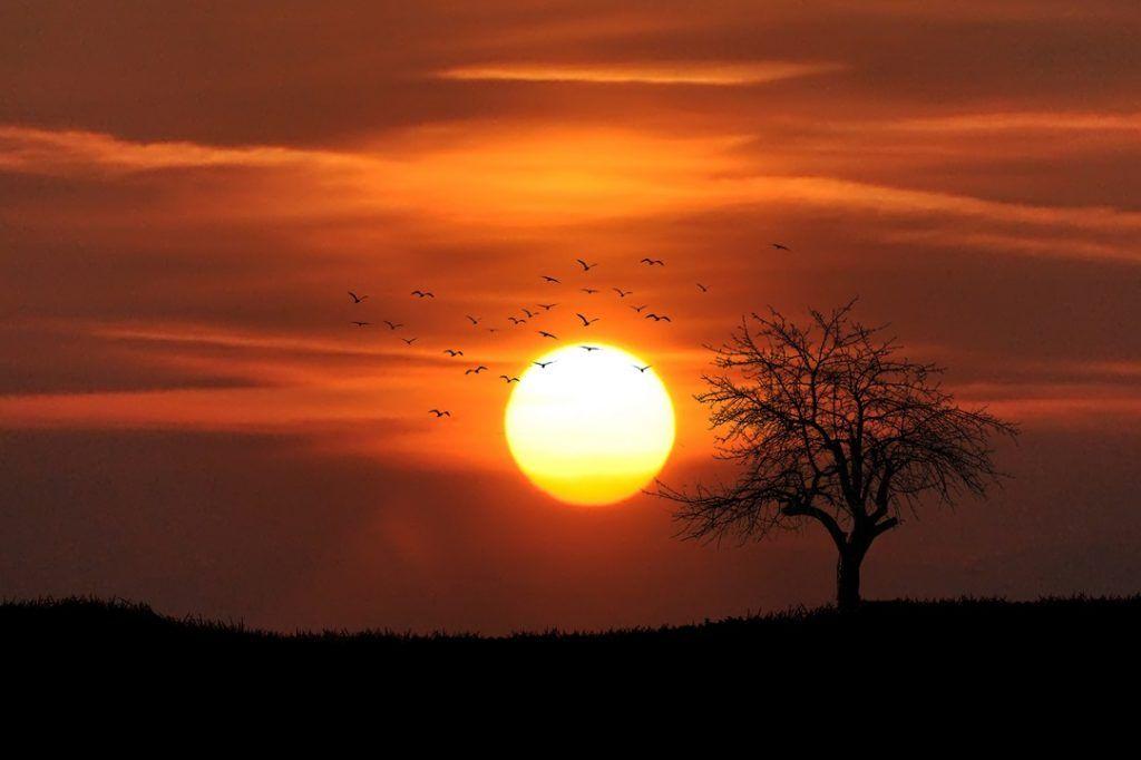 اجمل خلفيات لابتوب كيوت Laptop Wallpapers Hd For Windows 10 Tecnologis Sunset Pictures Sunset Photography Nature Sunset Photography