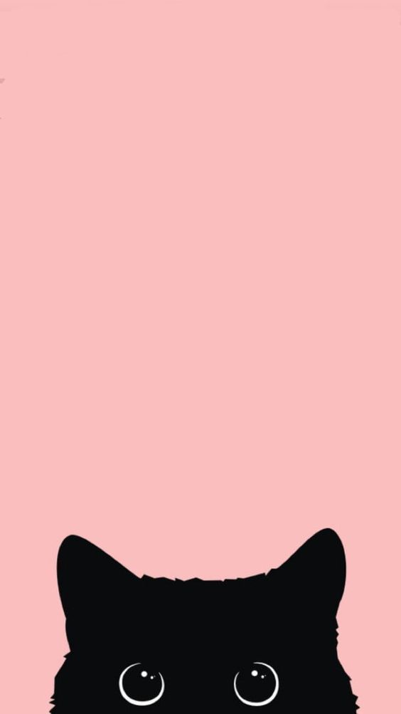 17 wallpapers for kitty lovers#kitty #lovers #wallpapers