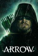 Arrow Temporada 8 Online Ver Series Online Gratis Temporadas Episodios Completos