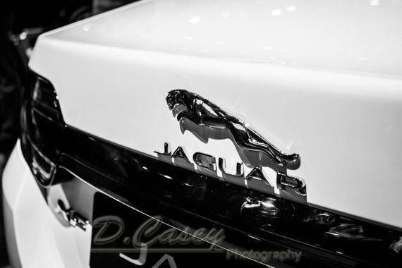 Jaguar, Photography, fine art Photography, Black and white, wall art, home décor, car photography, vintage, truck, auto, gift, ...