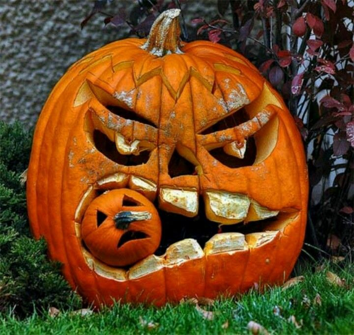 Scary pumpkin Halloween Pinterest Scary pumpkin, Hungry - natural halloween decorations