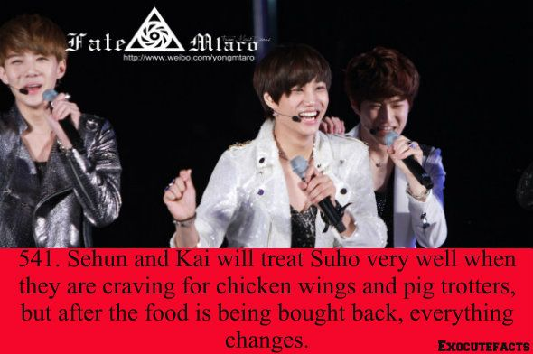 EXO Facts #541 ♥