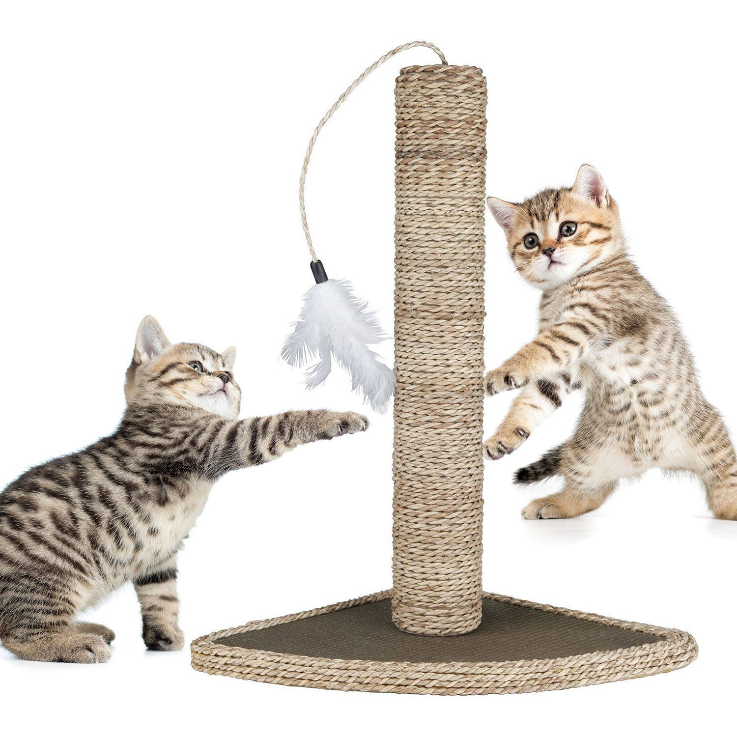 Amazon Com Mimibox Cats Toy Cat Scratching Post Natural Seagrass 19 With Feather Toy And Broad Base Dia 3 15 Intera Cat Scratching Post Pet Toys Cat Toys