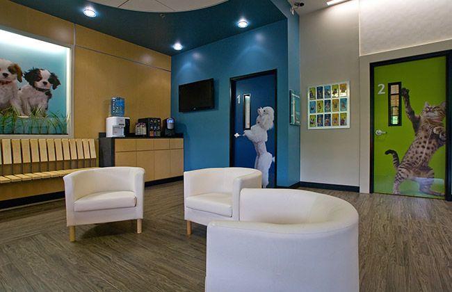 Krs King Retail Solutions Portfolio Banfield Pet Hospitals Hospital Design Animal Hospital Pet Clinic