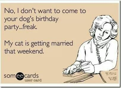 No, I don't want to come to your dog's birthday party......