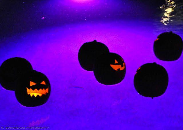 poca cosa: Floating Pumpkins