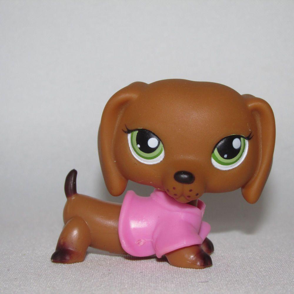 Littlest Pet Shop Lps Dachshund Puppy Dog Hasbro Green Eyes 139 Pink Shirt Hasbro Lps Dachshund Ebayroc Lps Dachshund Lps Littlest Pet Shop Dachshund Puppy