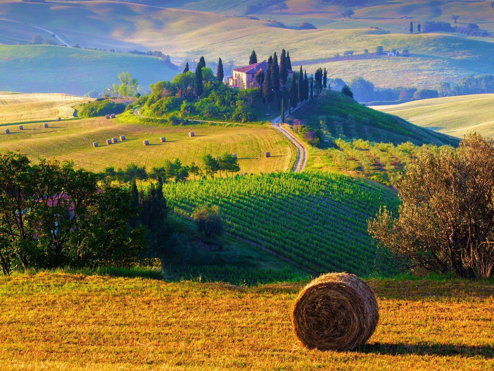 Italie toscane paysage de nature des champs des meules - Bureau de change place d italie ...