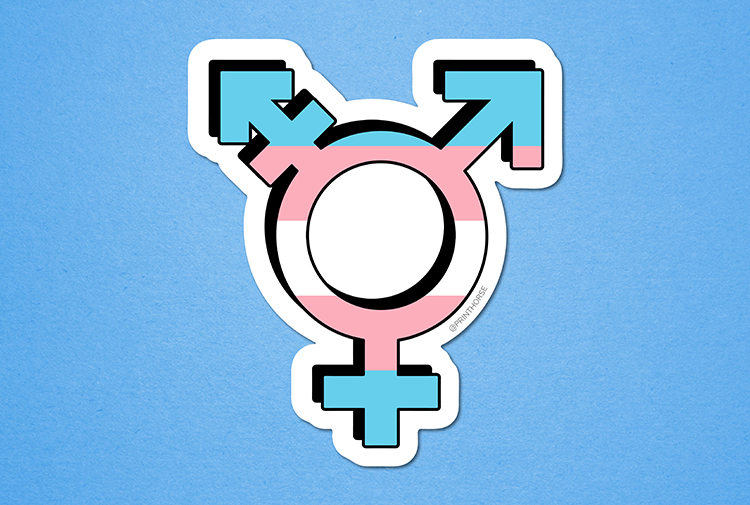 Pin On Trans Pride
