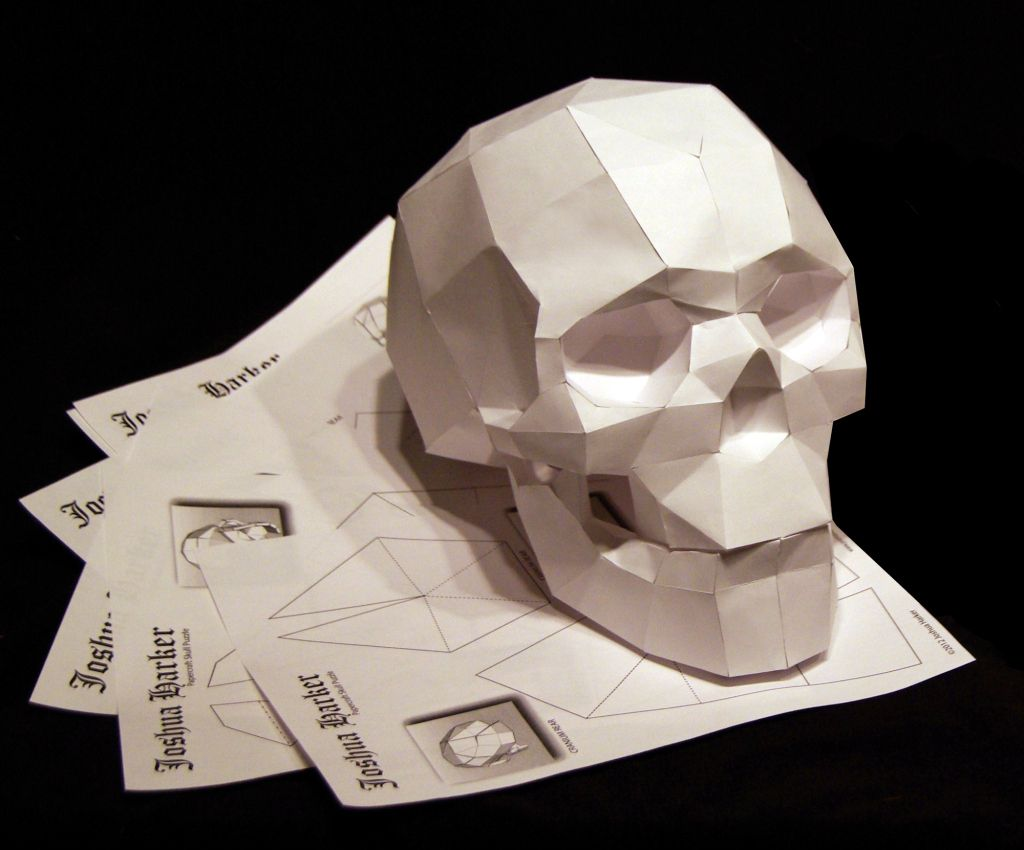 Geodesic Skulls Projections