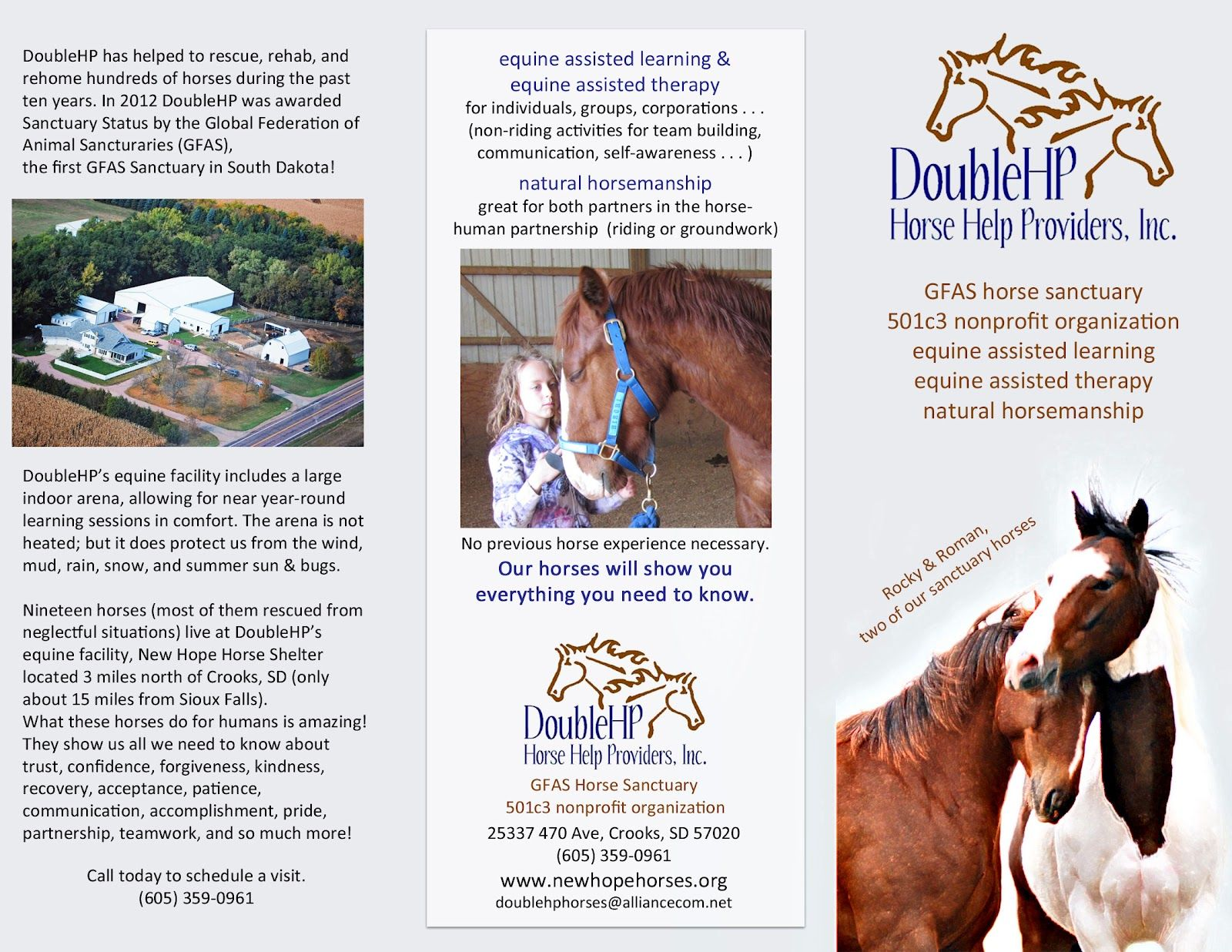 New Hope Horses Home Page New Brochure For DoubleHP Horse