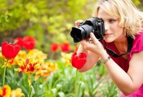 Free Amateur Photography Contests Photo Info Ideas Quotes
