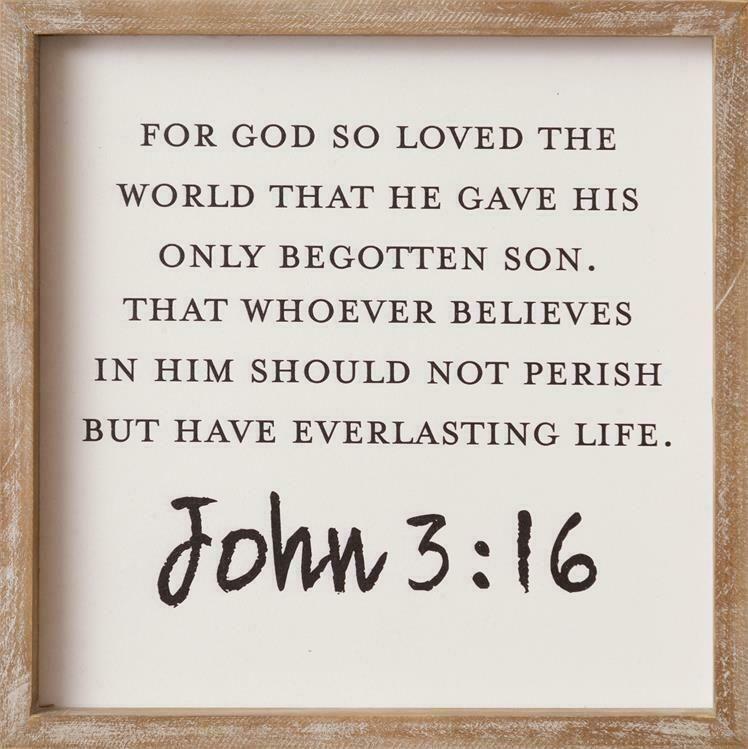 Image result for John 3:16 kjv