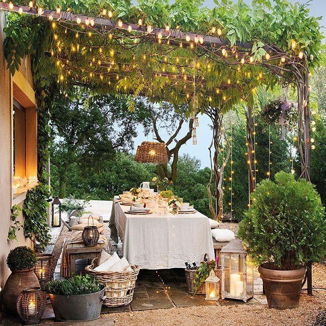 Árboles frutales en el diseño del jardín | Luz tenue, Chile fotos y ...