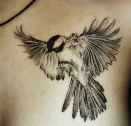Beautiful Realistic Chickadee Tattoo By Australian Realism: Tatoo, Kroppskonst, Tatuering