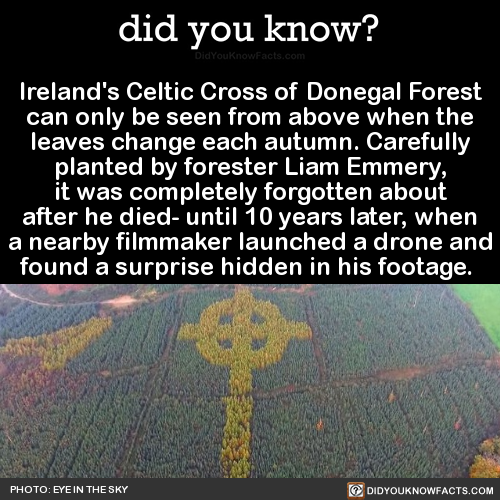 didyoukno Ireland's Celtic Cross of Donegal    is part of Did you know facts, Weird facts, Fun facts, Facts, Cool stuff, Wtf fun facts - didyoukno Ireland's Celtic Cross of Donegal