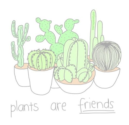 Pin By On Pretty Plants Pinterest Cactus Drawing Succulents