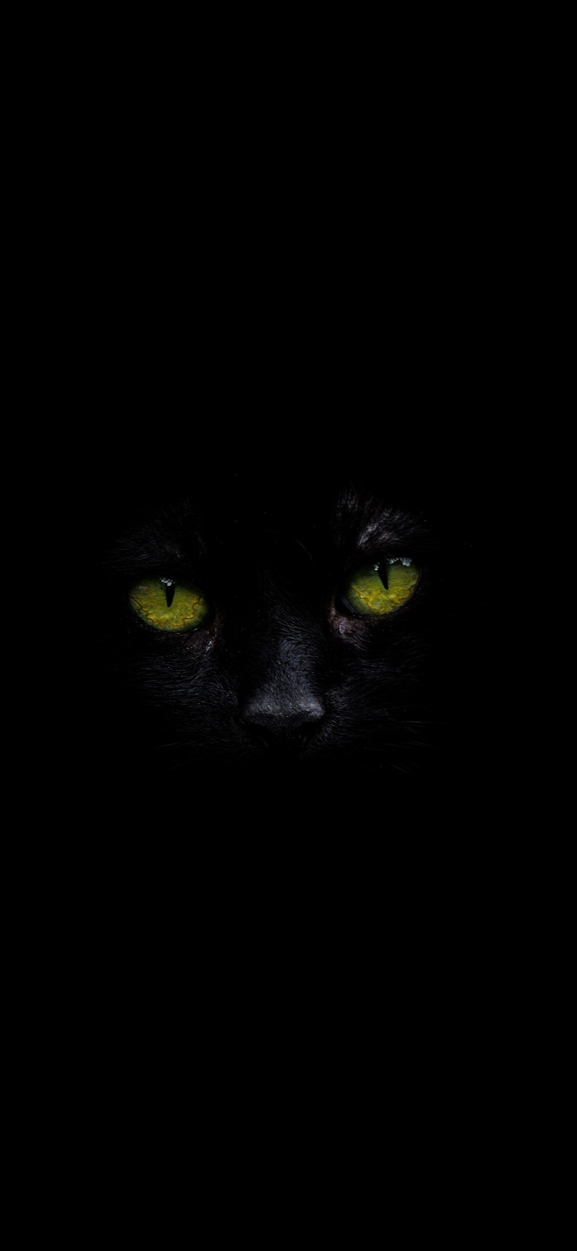 Black Cat With Green Eyes Amoled Wallpaper Amoled In Eyes Wallpaper Green Eyes Animal Tattoos