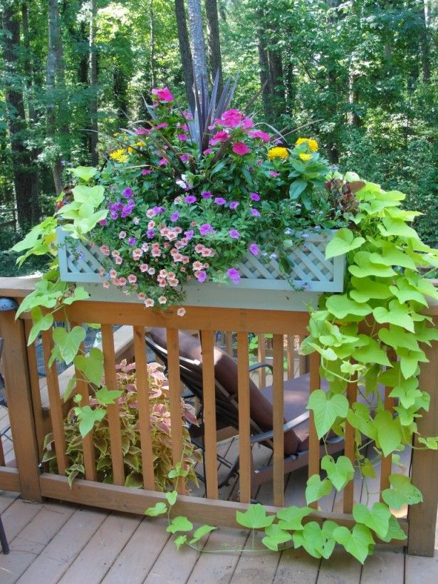 Deck Garden Ideas galvanized steel raised bed garden to keep my dogs out Deck Railing Planter Boxes Plans
