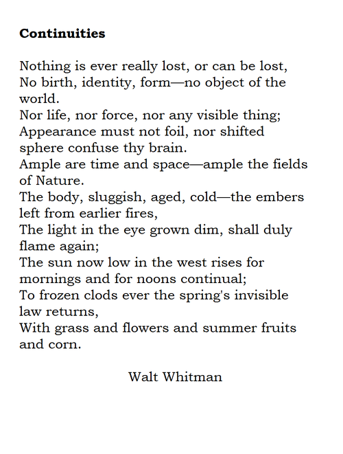 literary analysis of song of myself 10 by walt whitman Transcendental legacy in literature walt whitman  'the american scholar' and 'a song for occupations' walt whitman  nature and whitman's 'song of myself .