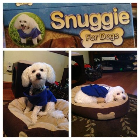 Pursuit of Happiness: Snuggie for Dogs