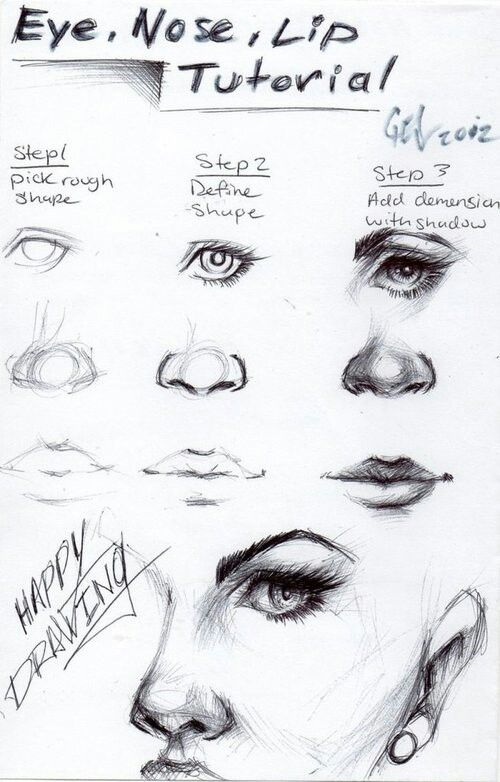 Eye nose front diagram free car wiring diagrams how to draw eyes nose and mouth drawing rh pinterest com eye diagram front and side ccuart Gallery