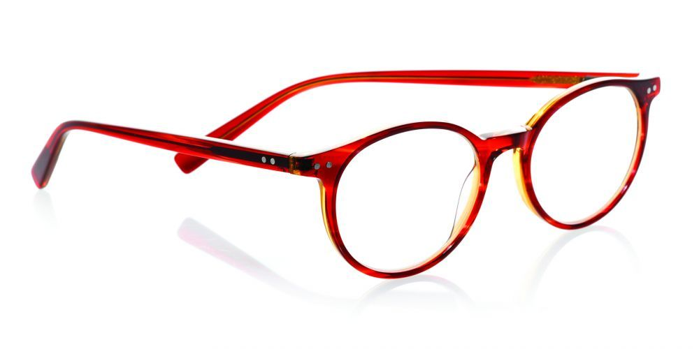 A frame to match your legal briefs: eyebobs new Case Closed reading ...