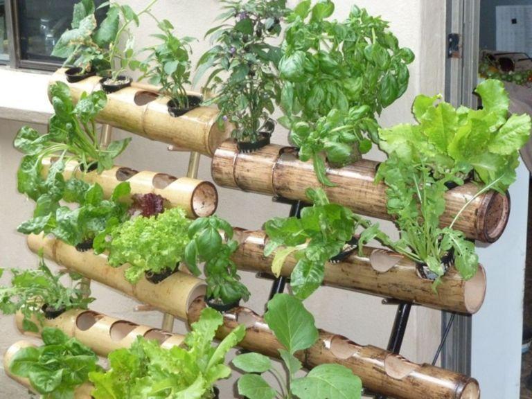Easy DIY Vertical Vegetable Garden of Bamboo Vertical