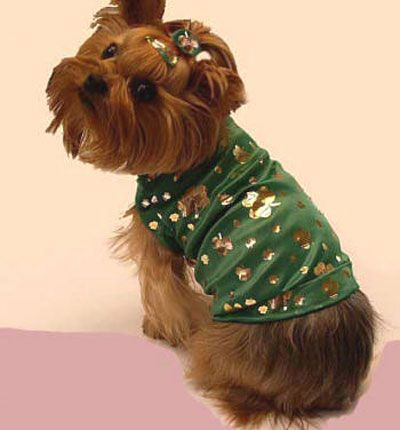 When Irish Dogs Are Smiling 12 Fun St Patrick S Day Dog Costumes