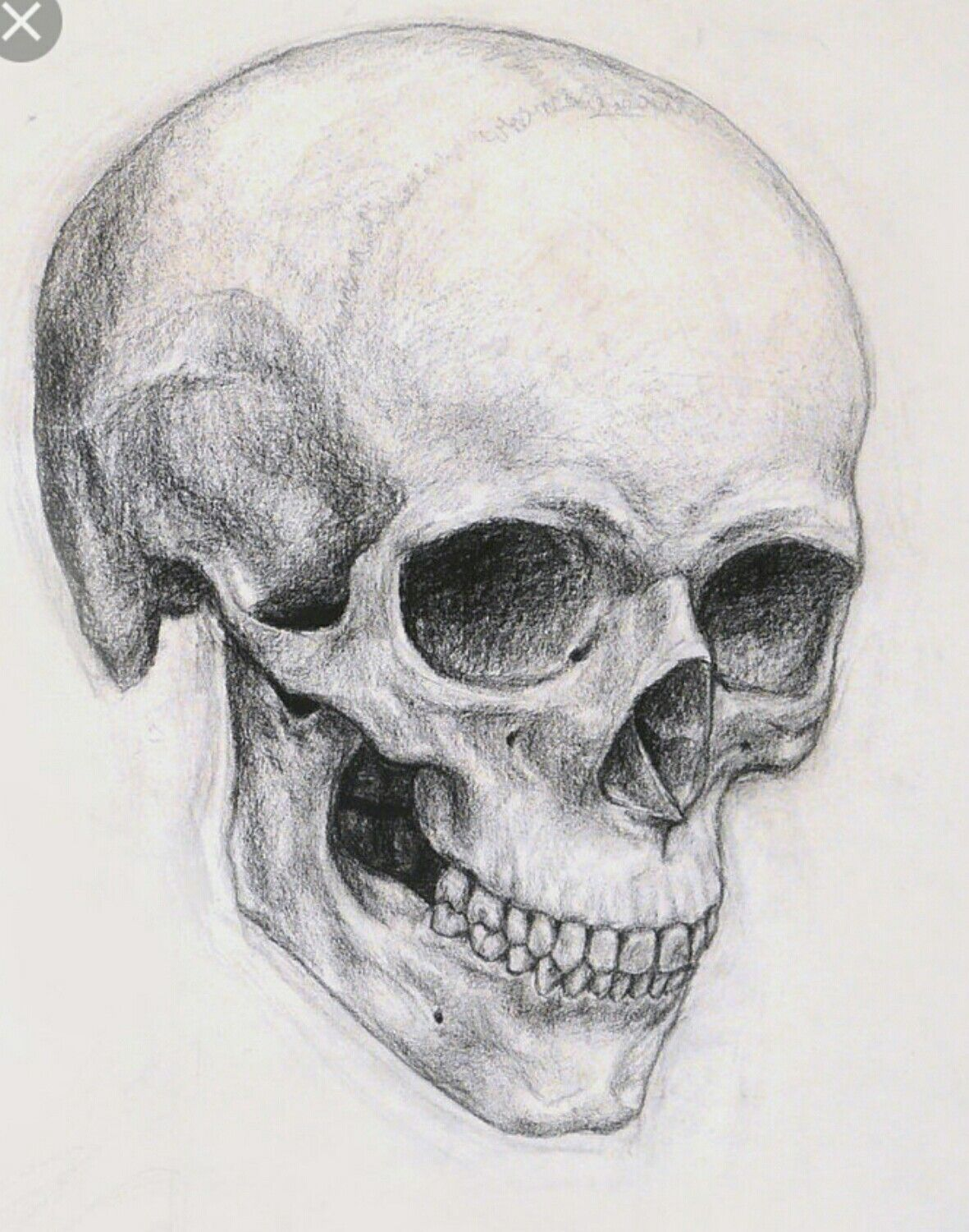 Skull angles | Ink | Skull sketch, Art, Skeleton drawings