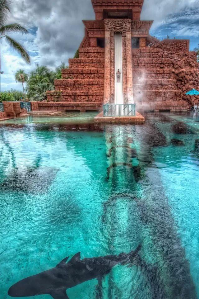 Superb Leap Of Faith At The Atlantis Resort In The Bahamas.