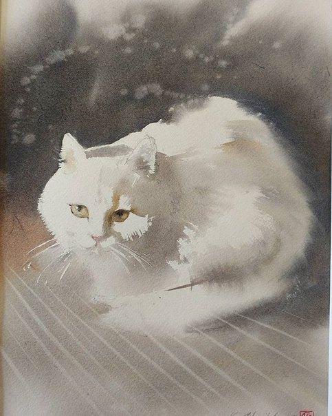 Новости Кошачий эскиз, Портреты домашних животных