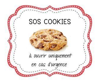 Fabulous sos cookies 3 | noel | Pinterest | Sos cookies, Cookies et Cadeau MJ59