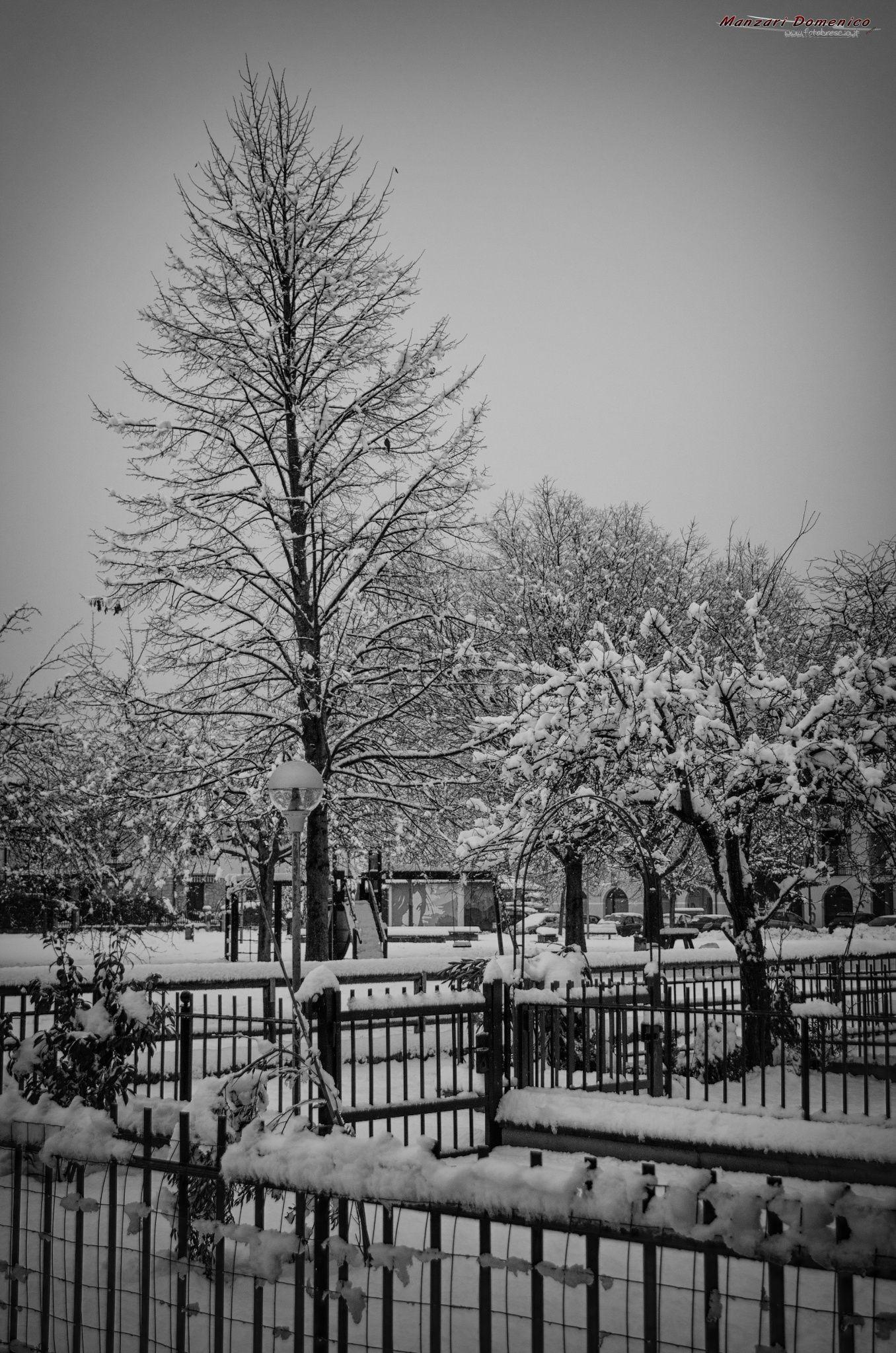 Roncadelle sotto la neve (C)2015 by FotoBrescia Manzari Domenico on 500px