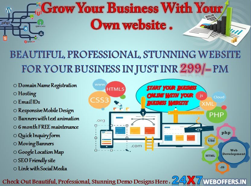 Grow Your Business With Your Own website  website designer in