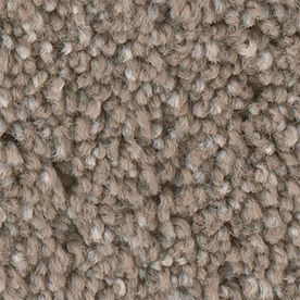 Stainmaster Foundry I 12-Ft Petprotect Stucco Glaze Plush Carpet Sample S796047stucco G-1380