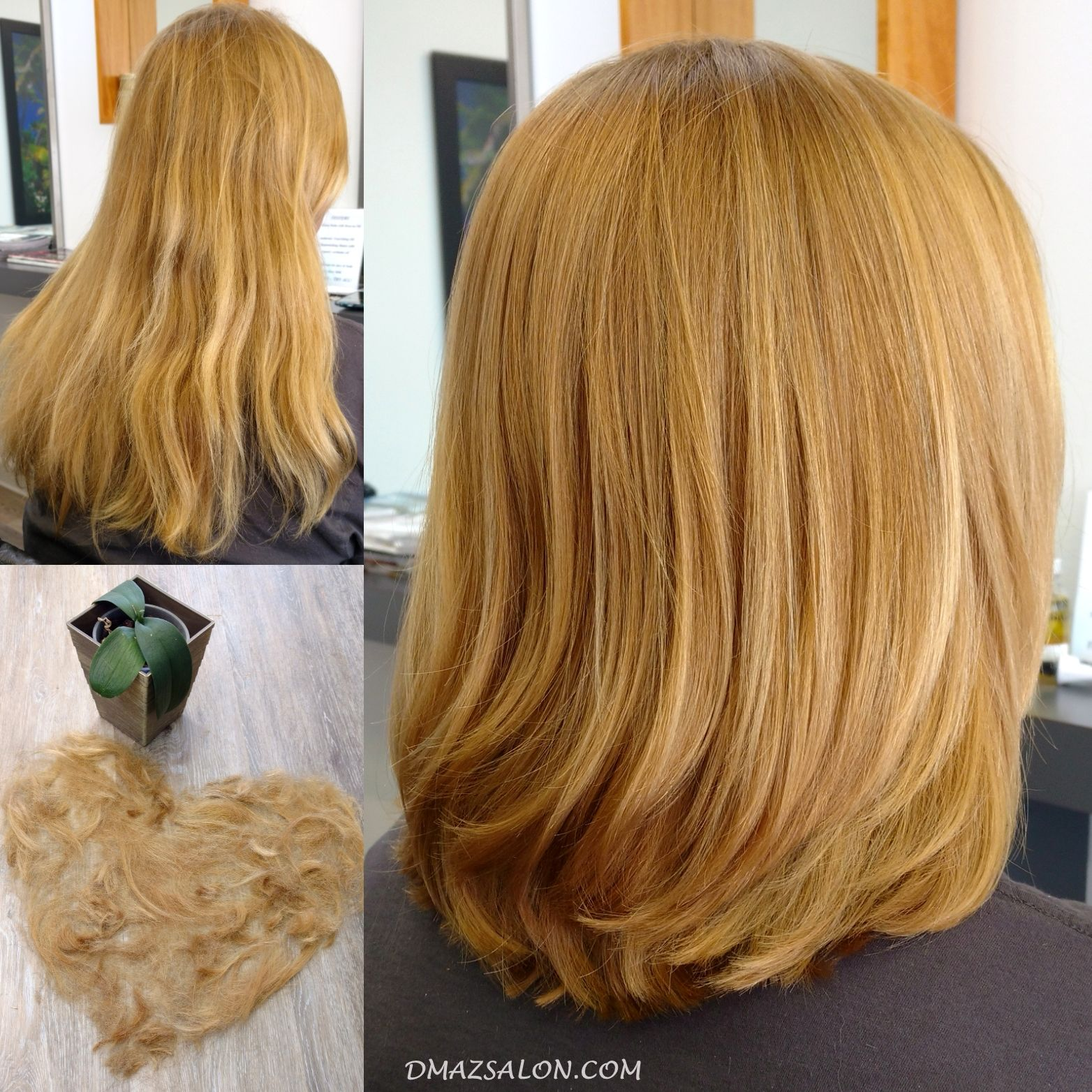 A Certified Green Circle Salon Hair Beachwood Ohio Long Hair Styles