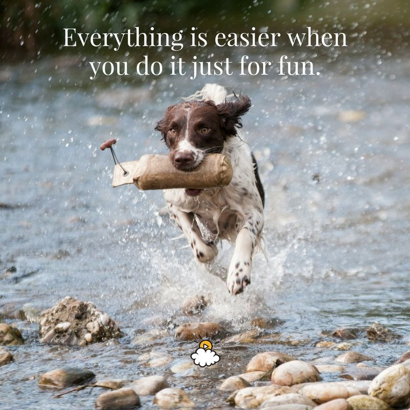 Everything Is Easier When You Do It Just For Fun Inspiring
