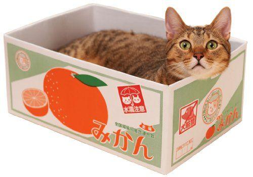 ミュー Mju にゃんボール みかん箱 ミュー Mju Http Www Amazon Co Jp Dp B00gh8kpdg Ref Cm Sw R Pi Dp Pczfvb09456jw 猫用 ベッド ペット用品 みかん箱