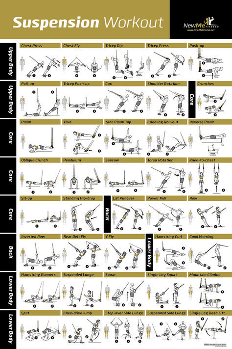 Awesome Suspension exercise poster for TRX workouts! Iu0027ve never seen - best of tabla periodica con sus respectivas valencias