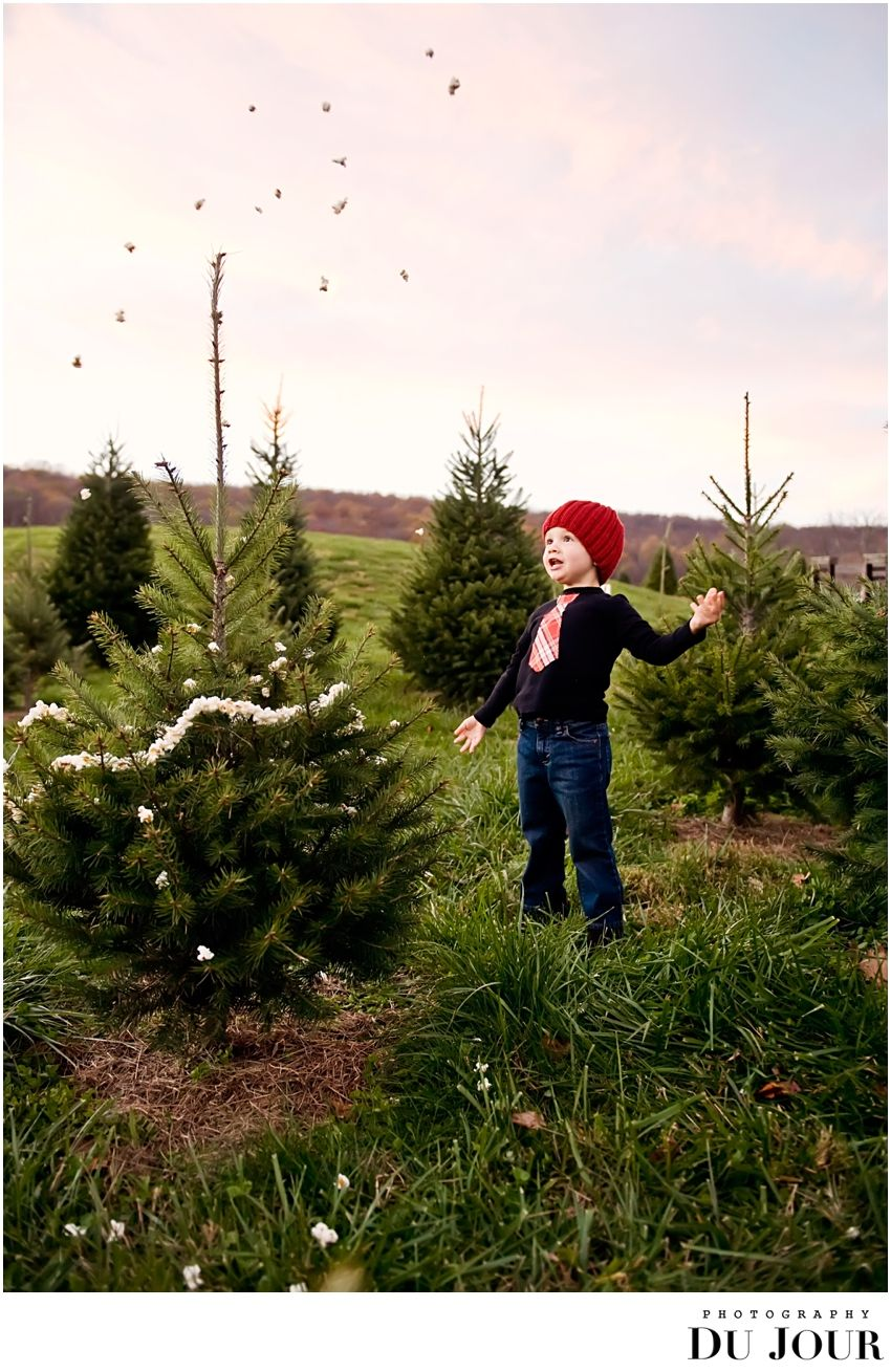 Christmas Tree Farm Photos Popcorn Garland Christmas Tree Farm Photos Christmas Tree Farm Photo Shoot Tree Farm Photo Shoot