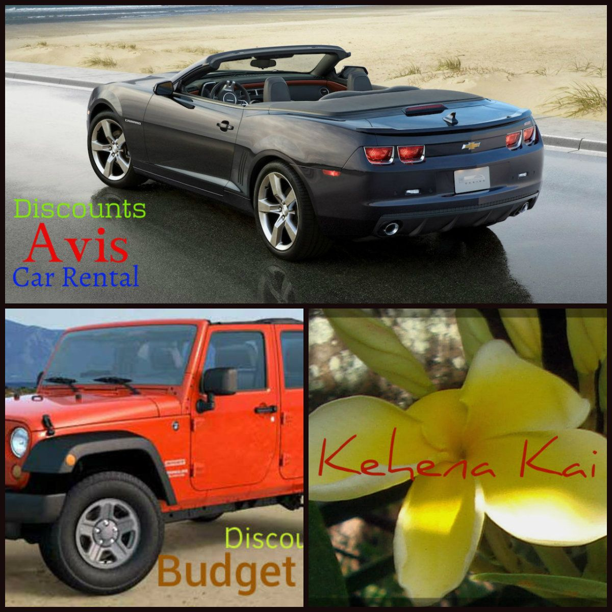 Convertible or Jeep ? Save on Car Rental while in Hawaii