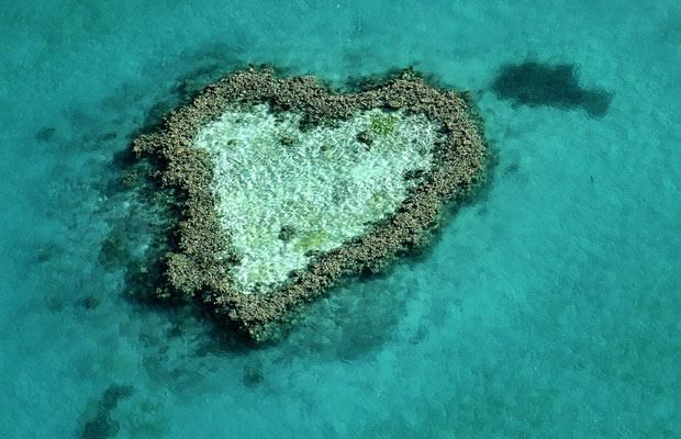 Happy Valentines Day Reefaholics! A coral reef in the Great Barrier Reef in Australia shaped like a heart.